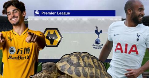 Thần rùa tiên tri dự đoán Wolves vs Tottenham | Ngoại Hạng Anh | 20h00 ngày 22/8/2021