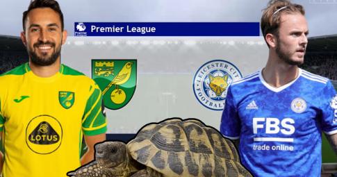 Thần rùa tiên tri dự đoán Norwich vs Leicester | Ngoại Hạng Anh | 21h00 ngày 28/8/2021
