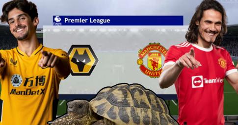 Thần rùa tiên tri dự đoán Wolves vs Man United | Ngoại Hạng Anh | 22h30 ngày 29/8/2021