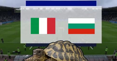 Thần rùa tiên tri dự đoán Italia vs Bulgaria | Vòng loại World Cup 2022 | 01h45 ngày 3/9/2021