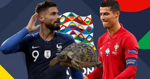 Rùa tiên tri dự đoán kết quả Bồ Đào Nha vs Pháp