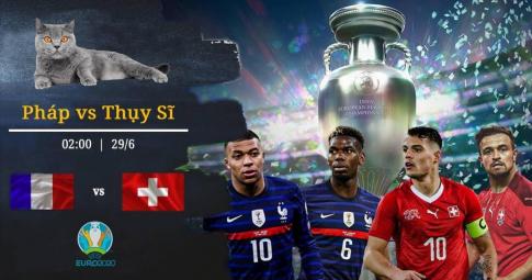 Mèo tiên tri Cass dự đoán kết quả Pháp vs Thuỵ Sĩ